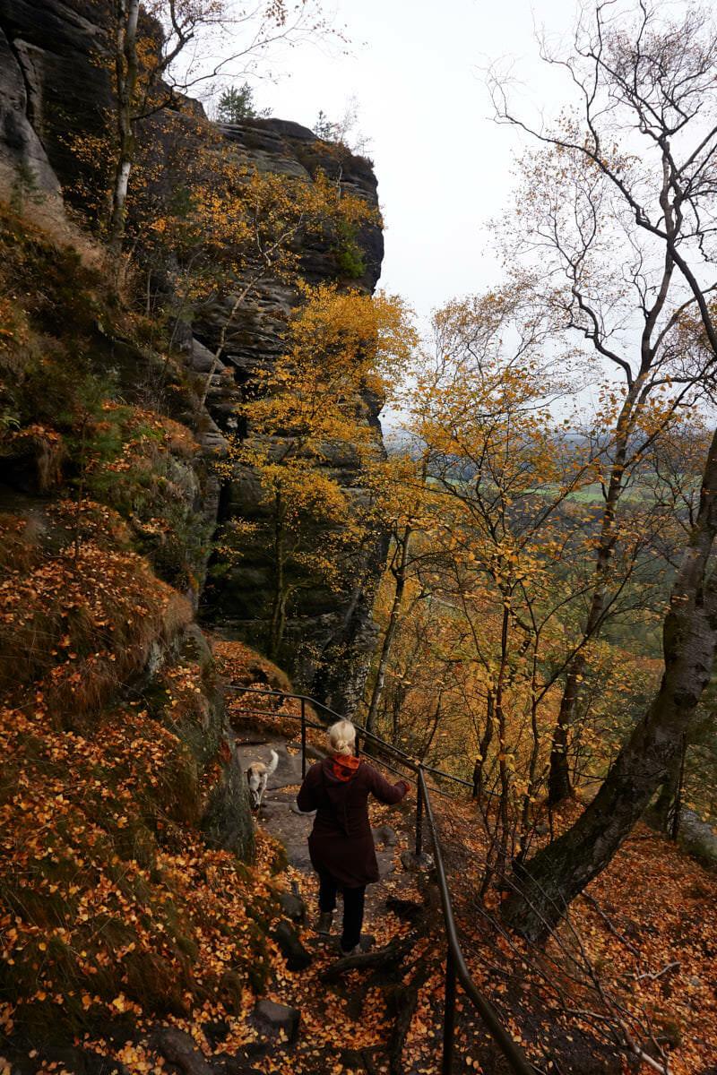 Nordabstieg vom Lilienstein über Treppen und Stiegen