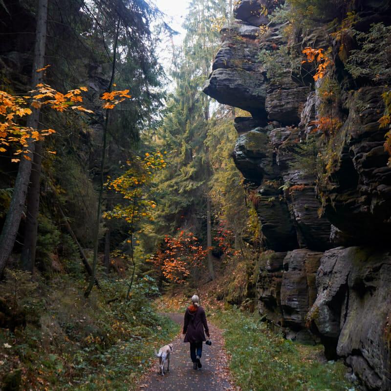 Richtung Höllengrund im Elbsandsteingebirge