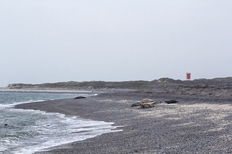 Runder Kies und scharfer Wind am Oststrand