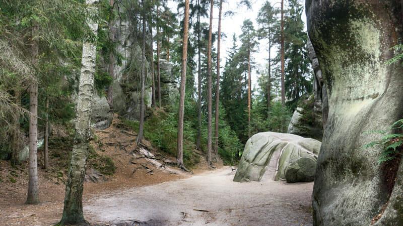 Adersbacher Felsenstadt Tschechien Fernwehbus - Wundervolle Landschaft in der Adersbacher Felsenstadt
