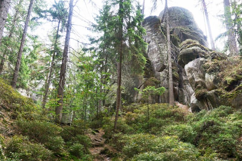 Adersbacher Felsenstadt Tschechien Fernwehbus - Urige Wälder